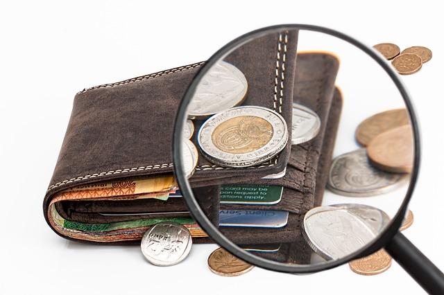 rozbor peněženky